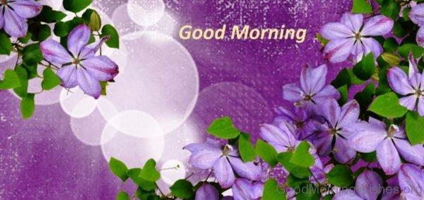 Adorable Good Morning Image 1
