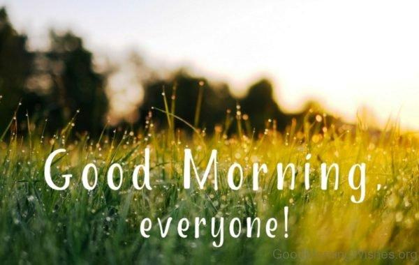 Amazing Good Morning Everyone Pic