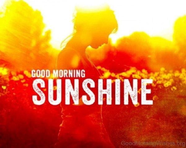Beautiful Good Morning Image 1