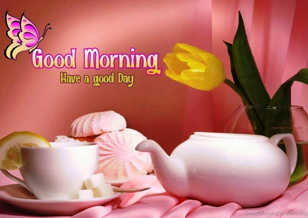 78 Fresh Good Morning Wishes
