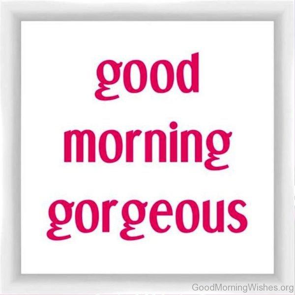 Beautiful Good Morning Pic 2