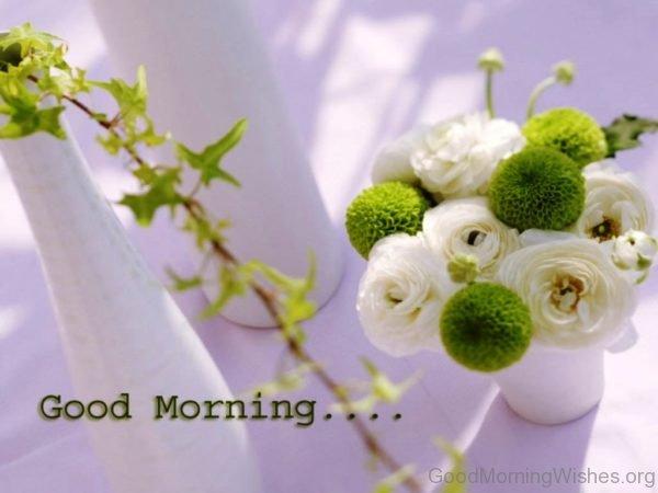 Beautiful Good Morning Pic 7