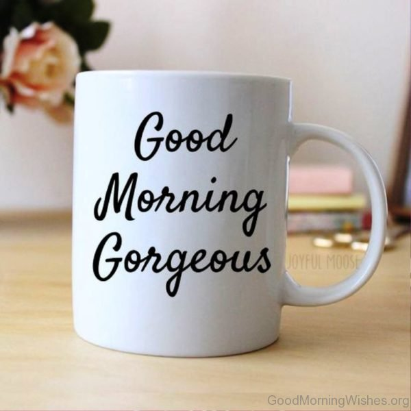 Beautiful Pic Of Good Morning 4