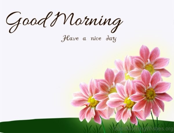 Elegant Good Morning Flowers Pic