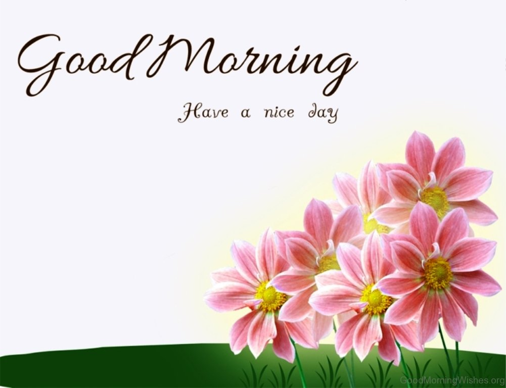 Good Morning Flowers Images : Lovely good morning wishes with flowers