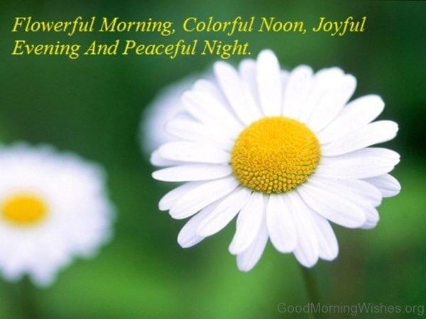 Flower Morning