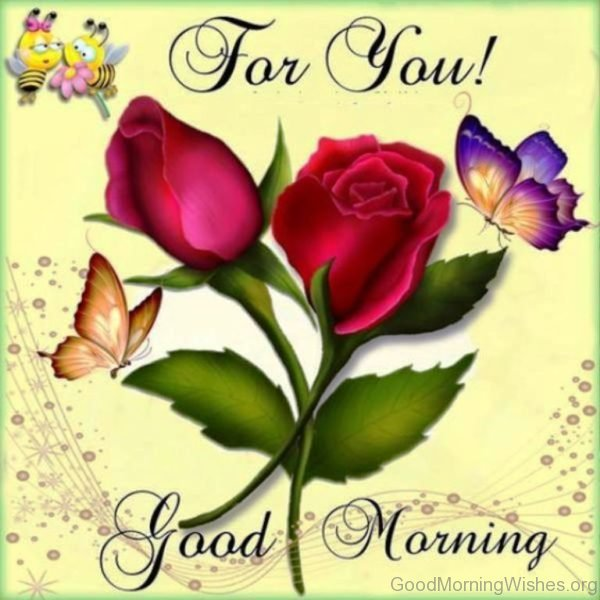 For You Good Morning