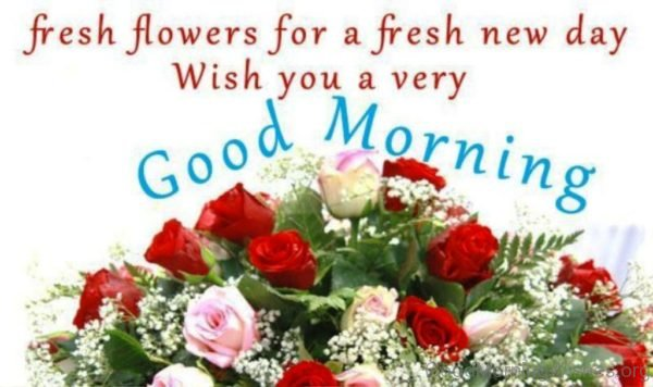 Fresh Flowers For A Fresh New Day Wish You A Very Good Morning