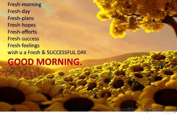 Fresh Morning Fresh Day