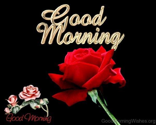 Good Morning 1 9
