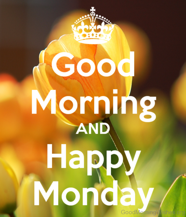 Good Morning And Happy Monday