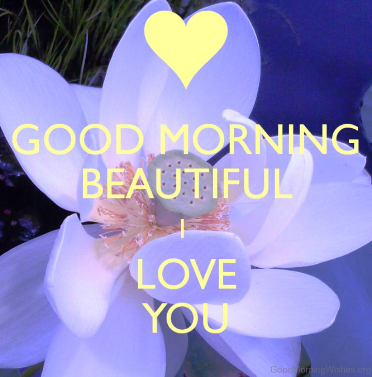 how to say good morning beautiful lady in italian