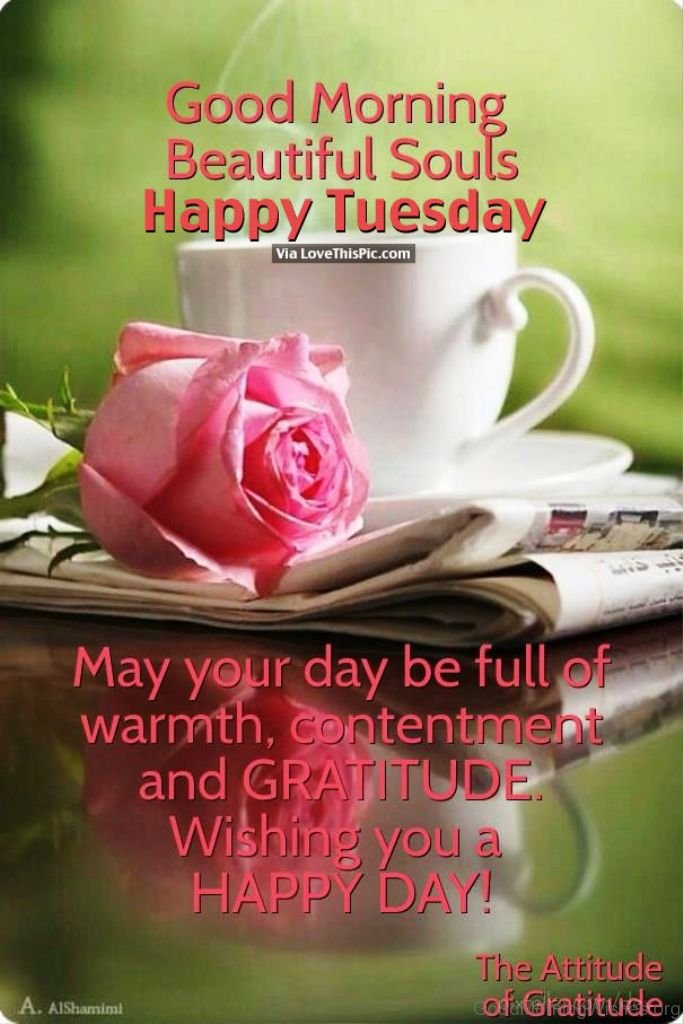 Good Morning Tuesday Messages : Beautiful good morning wishes