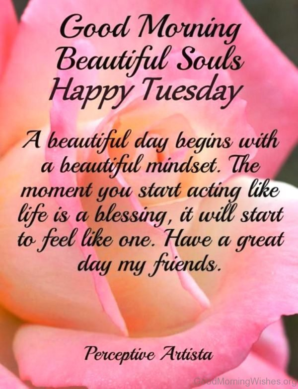 Good Morning Beautiful Souls Happy Tuesday