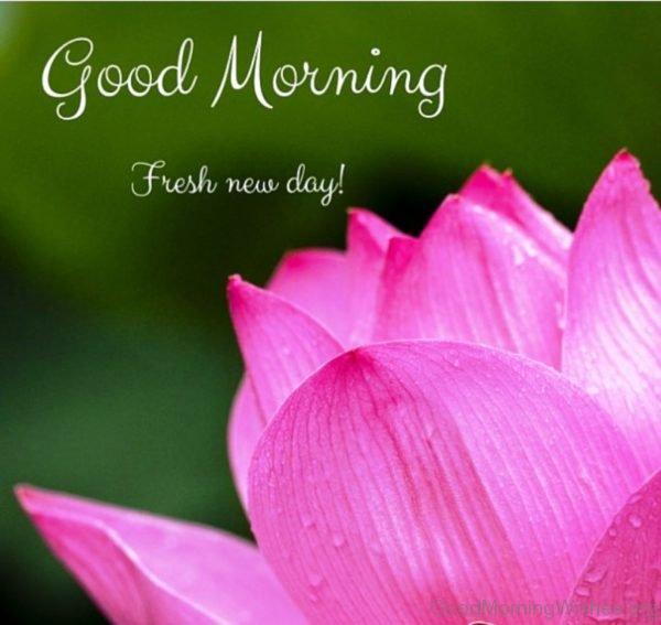 Good Morning Fresh New Day