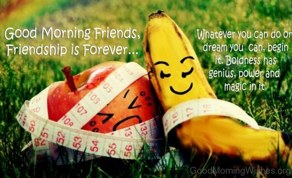 Good Morning Friends Friendship Is Forever