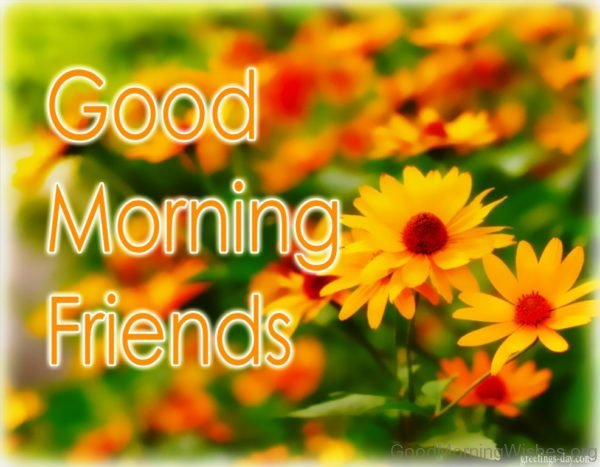Good Morning Friends Image 1