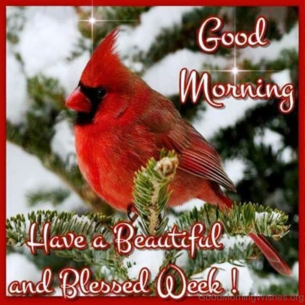 http://www.goodmorningwishes.org/wp-content/uploads/2016/11/Good-Morning-Have-A-Beautiful-And-Blessed-Week-600x600.jpg