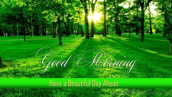Good Morning Have A Beautiful Day Ahead