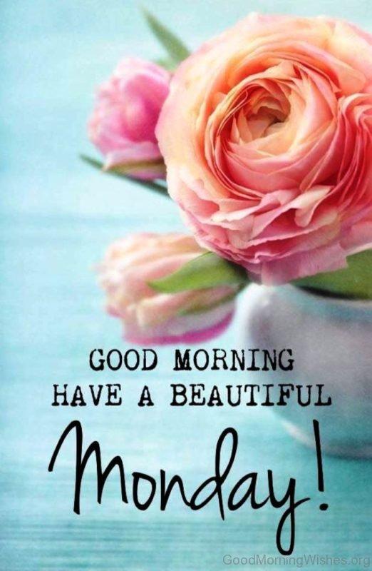 Good Morning Have A Beautiful Monday
