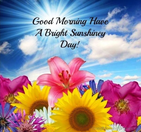 Good Morning Have A Bright Sunshiney Day
