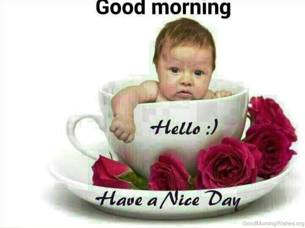 Good Morning Baby Quote : Hello good morning wishes