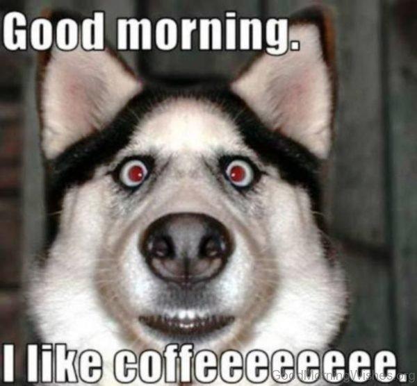 Good Morning I Like Coffee