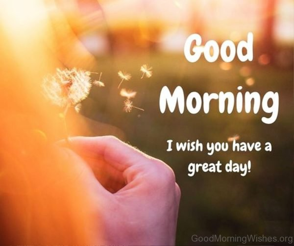 Image result for have a good day good morning images