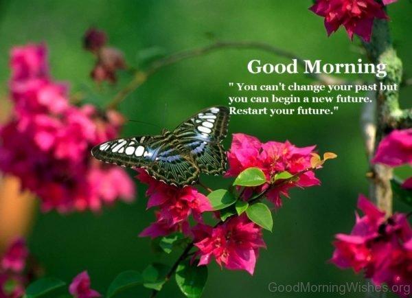 Good Morning Image 1