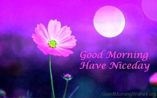 Good Morning Image Of Flower