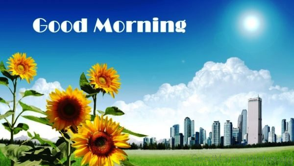 Good Morning Image With Flower 1
