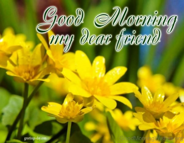 Good Morning My Dear Friends 1