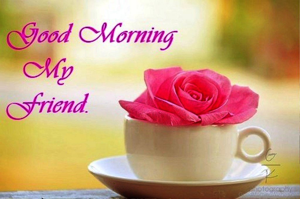 friend friendship good morning Funny good morning wishes for friendship are sent to friends to wish them a good  morning as well as for a good start to the friendship on a new day the wishes.