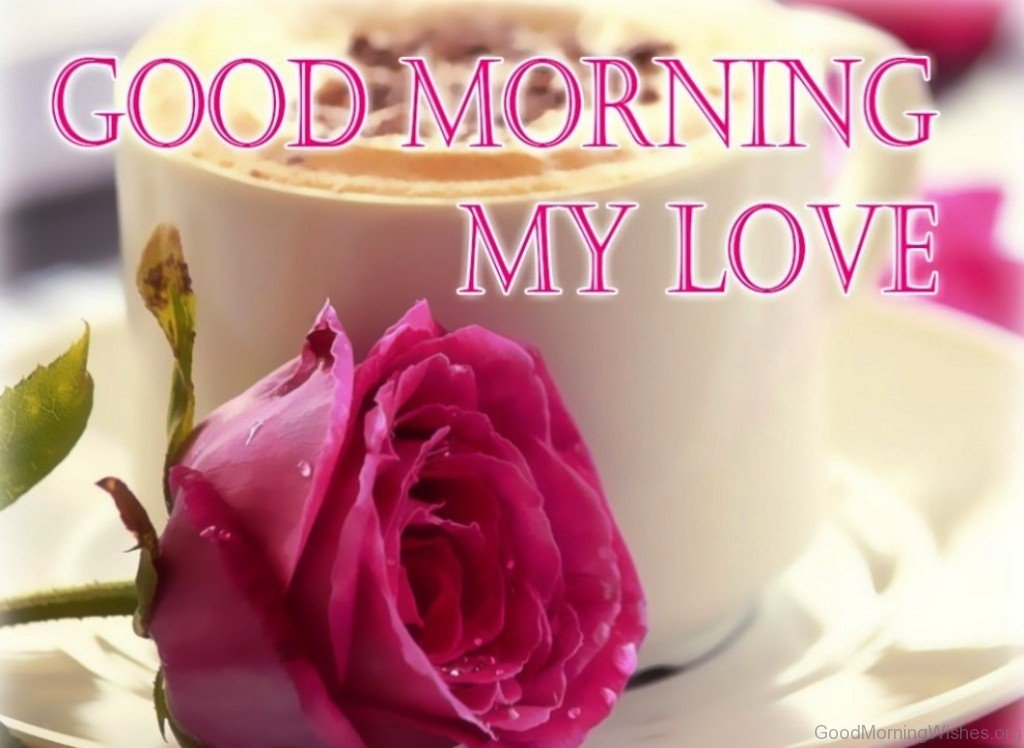 Good Morning Love One : Good morning wishes my love