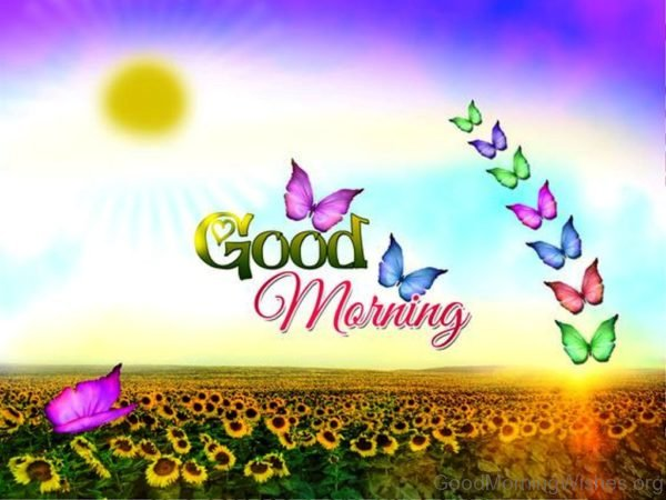 Good Morning Nice Image