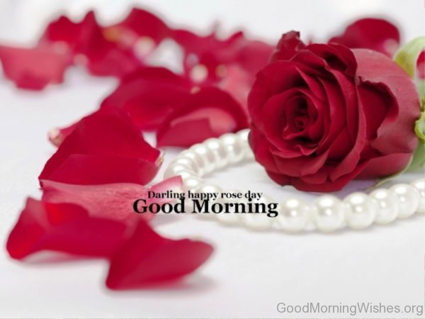 Good Morning Rose Day Special Images