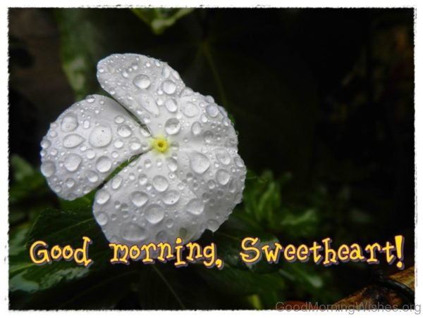 Good Morning Sweetheart Picture
