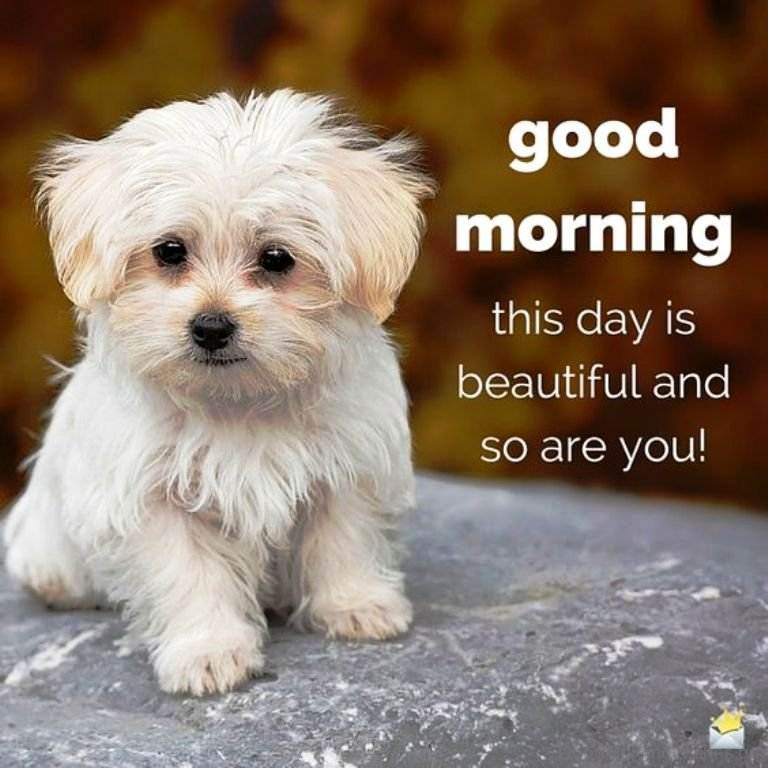 Cute Good Morning Images For Him