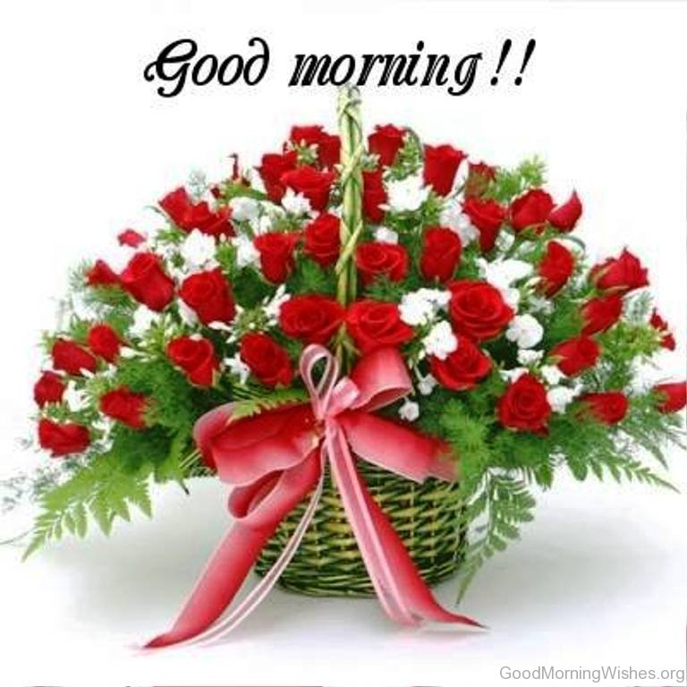 Good Morning Quotes With Flowers : Good morning wishes with rose