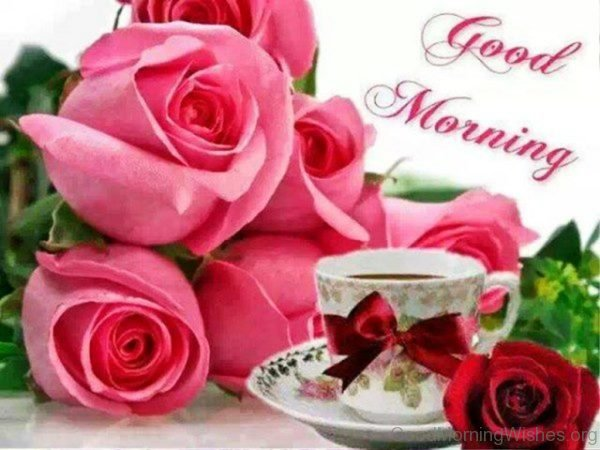 Good Morning Wishes With Roses