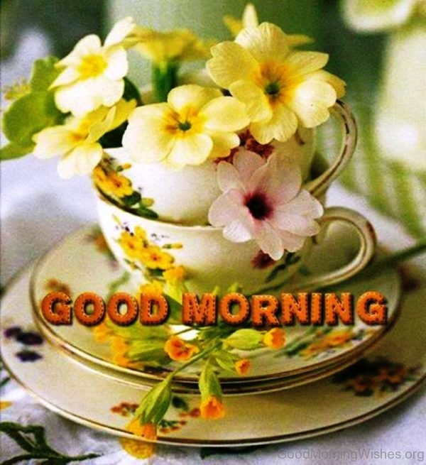 162 lovely good morning wishes with flowers good morning with fresh flowers image mightylinksfo