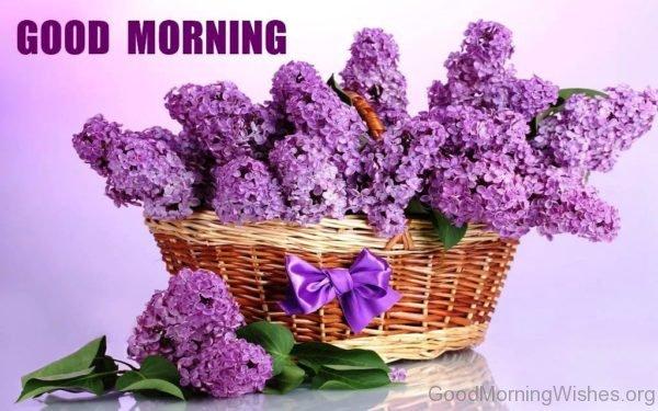 Good Morning With Lovely Flower