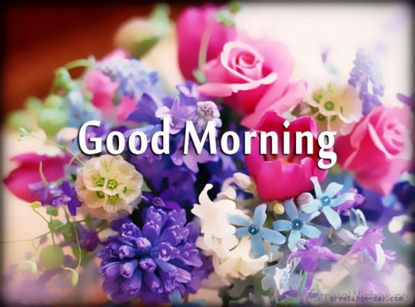 162 Lovely Good Morning Wishes With Flowers