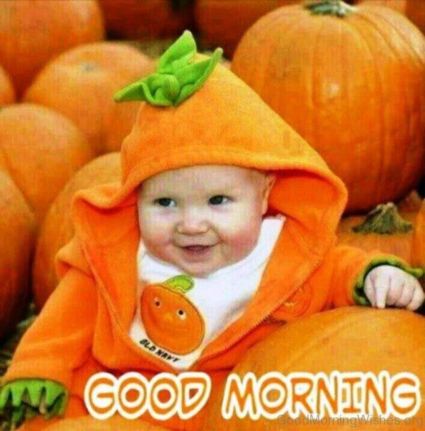 Good Morning With Pumpkin