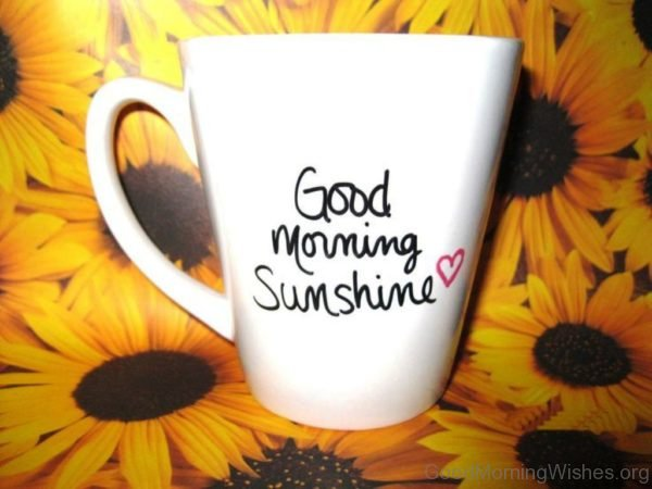 Good Morning With Sunflowers