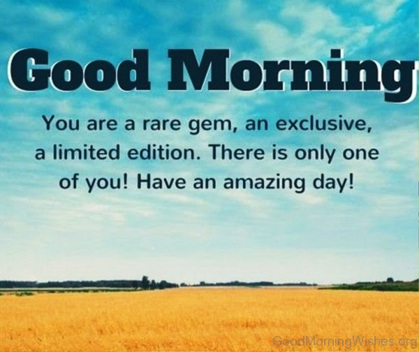 Good Morning You Are A Rare Gem An Exclusive A Limited Edition