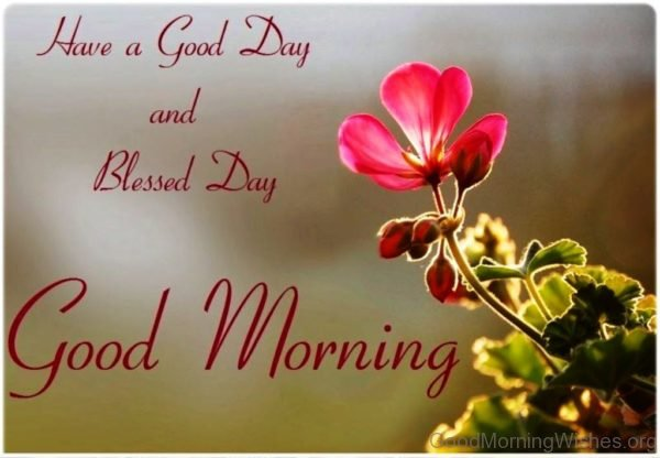 Have A Good Day And Blessed Day Good Morning