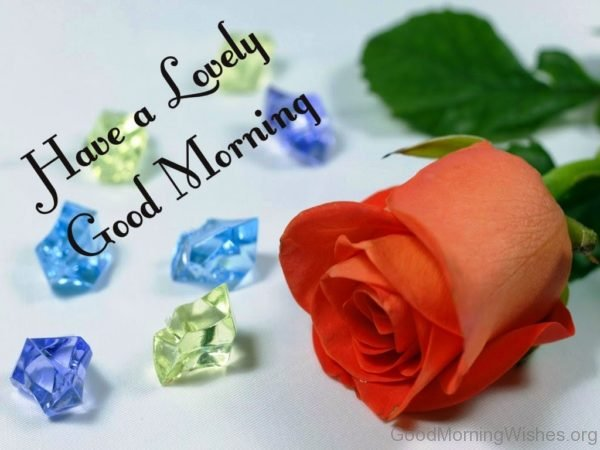Have A Lovely Good Morning