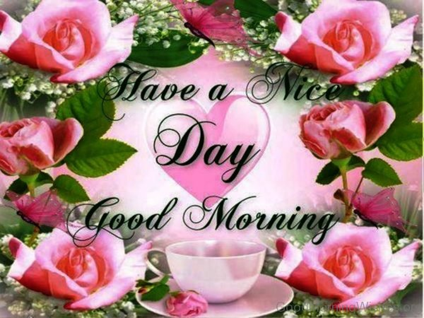 Have A Nice Day Good Morning 1