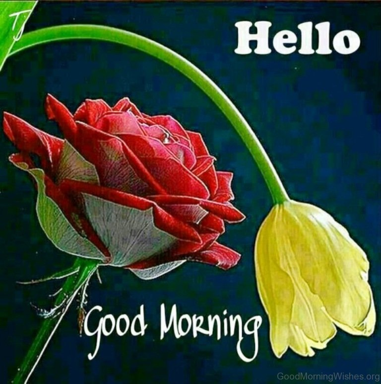 10 Hello Good Morning Wishes